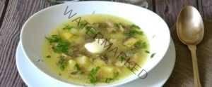 Грибной суп с сыроежками